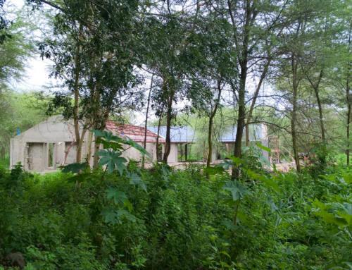 Voortgang Villa 'House-W' (Tanzania)
